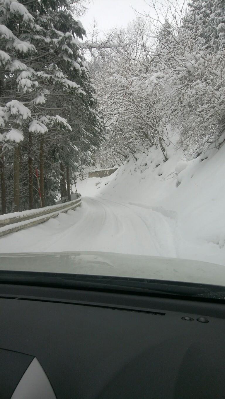 徳島のスキー場